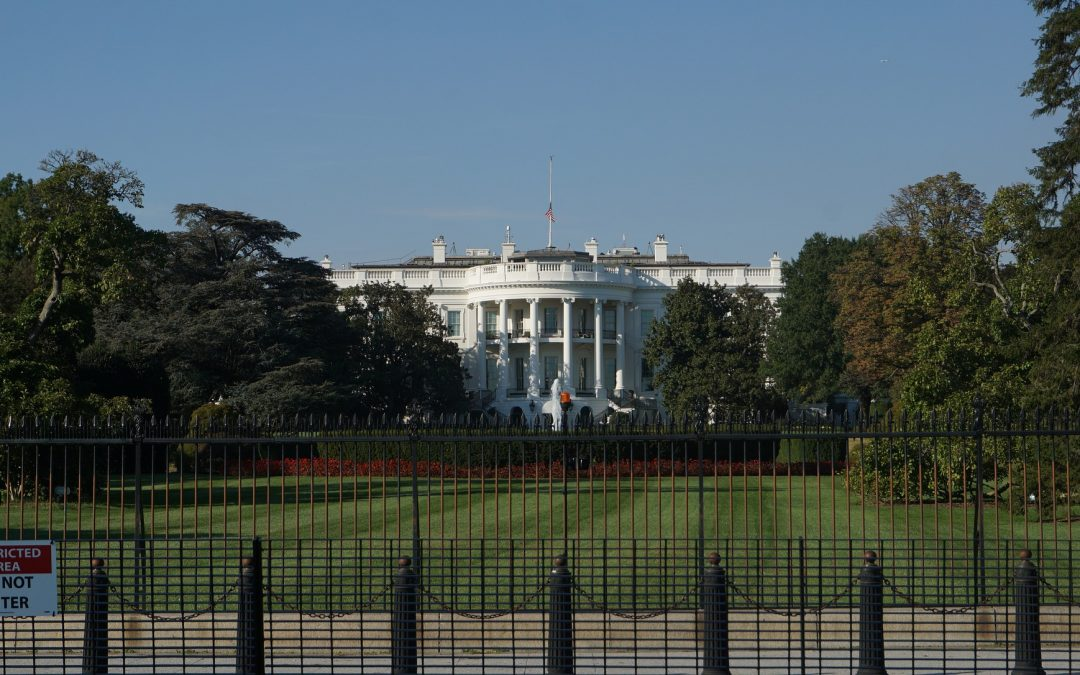 Zwischen Trump und traditioneller Managementlehre – Wie lange kann man Realitäten leugnen und Change aussitzen?